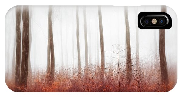 Woods iPhone Case - Endless Woods by Gustav Davidsson