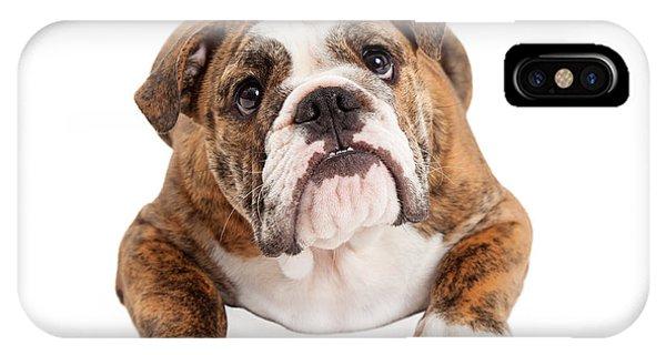 English Bulldog Laying Looking Up IPhone Case