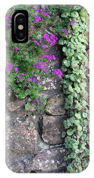 English Garden Wall IPhone Case