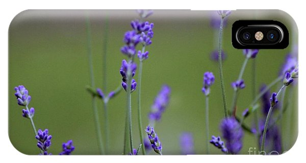 English Lavender IPhone Case