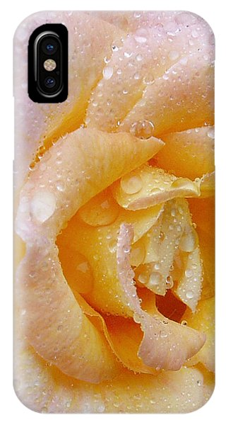 IPhone Case featuring the photograph After The Rain by Susan Leonard