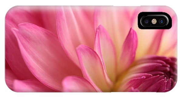Flower Gardens iPhone Case - Enticement by Connie Handscomb