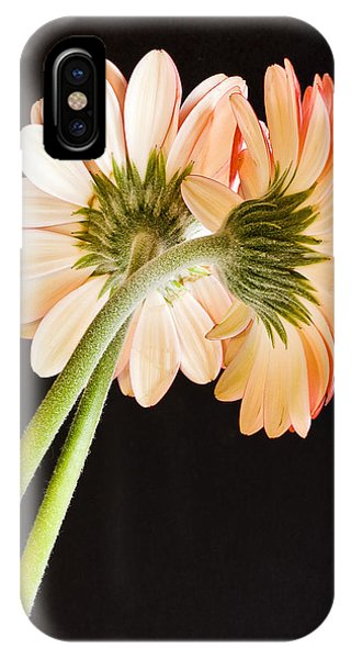 Entwined Phone Case by Diane Fifield