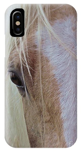 Equine Head Study IPhone Case