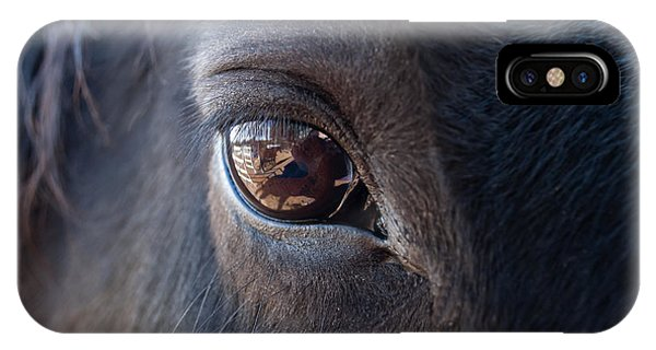 Horse iPhone Case - Equine In Sight by Sheryl Cox