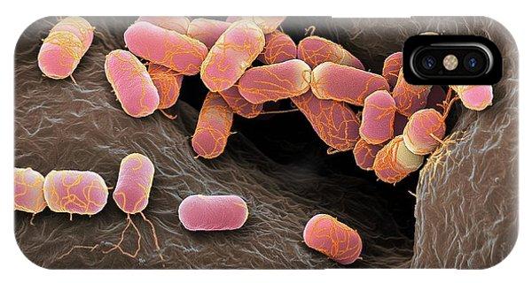 Escherichia Coli Bacteria Phone Case by Martin Oeggerli/science Photo Library