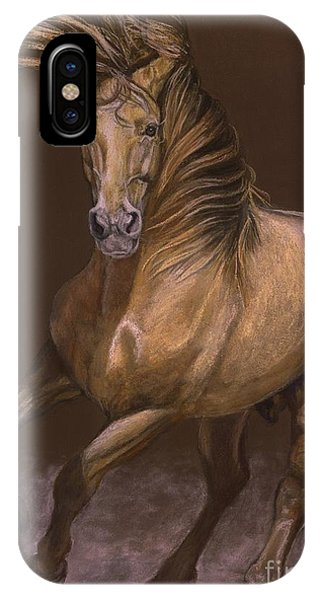 Espiritu Espanol IPhone Case