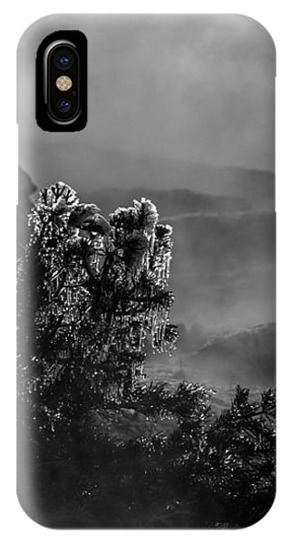 Ethereal Beauty In Black And White IPhone Case