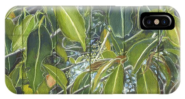 Euca - Leaves Section IPhone Case