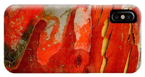 Eucalyptus Bark IPhone Case