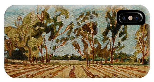 Eucalypus Trees Near Bloemfontein IPhone Case