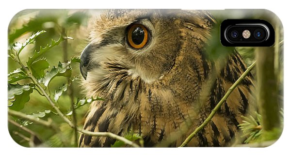 Eurasian Eagle-owl 2 IPhone Case