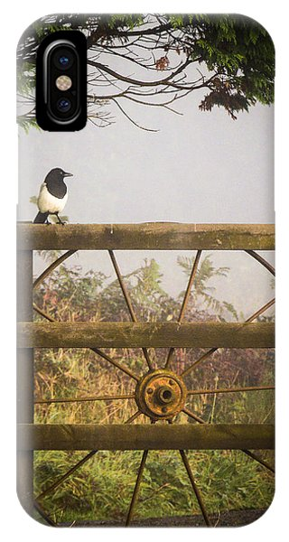 Eurasian Magpie In Morning Mist IPhone Case
