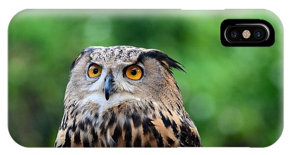 Eurasian Or European Eagle Owl Bubo Bubo Stares Intently IPhone Case