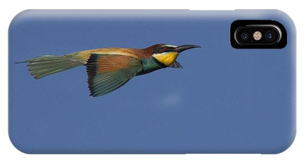 European Bee-eater IPhone Case