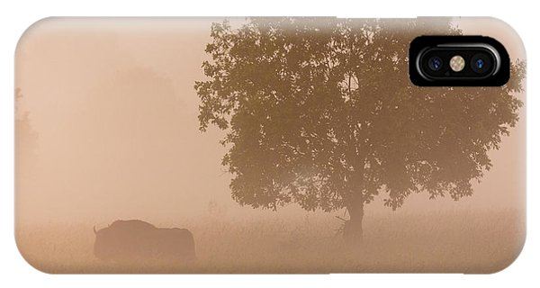 Fog iPhone Case - European Bison by Aitor Badiola