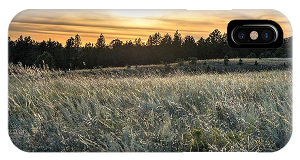 Evening Grasses In The Black Hills IPhone Case