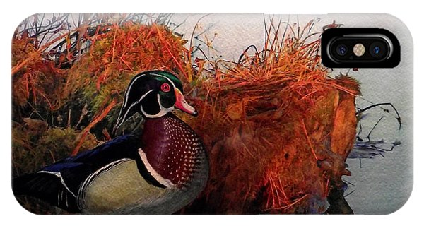 Wood Ducks iPhone Case - Evening Light Wood Duck by Ken Everett