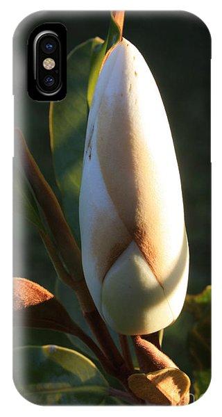 Evening Magnolia Bud IPhone Case