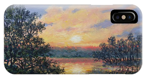 Evening Marsh Light IPhone Case