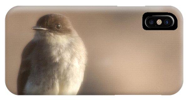 Evening Phoebe IPhone Case