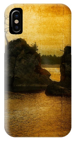 Evening Roost IPhone Case