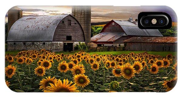 Silos iPhone Case - Evening Sunflowers by Debra and Dave Vanderlaan