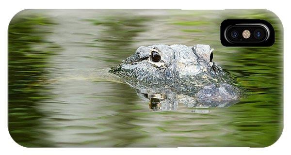 Everglades 'gator IPhone Case