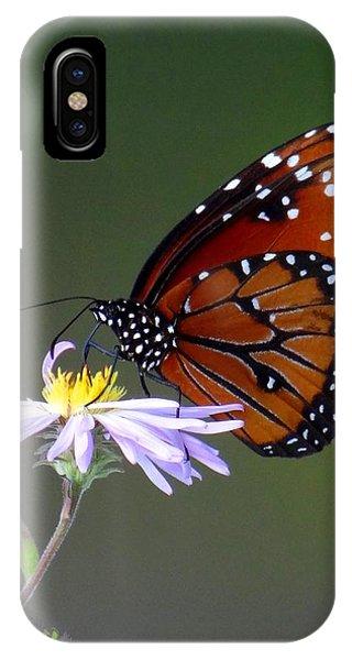 Everglades Queen IPhone Case