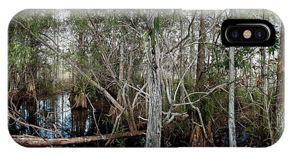 Everglades Swamp-1 IPhone Case