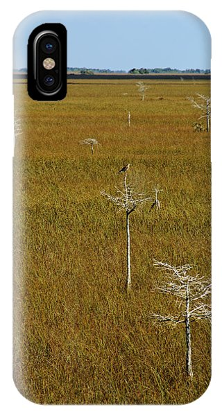 Everglades View IPhone Case