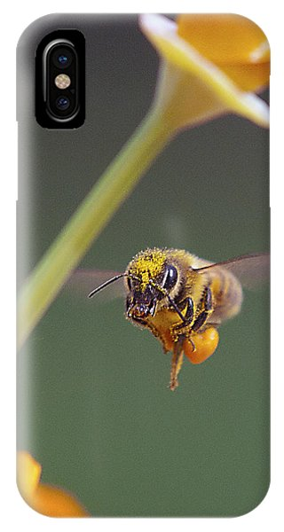 Pollination iPhone Case - Excuse Me by Joe Schofield