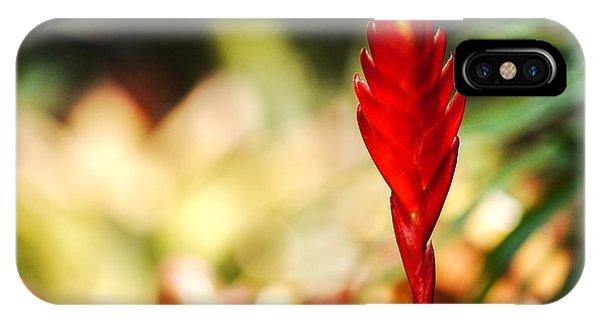 Exotic Plant Phone Case by Cristin Sirbu