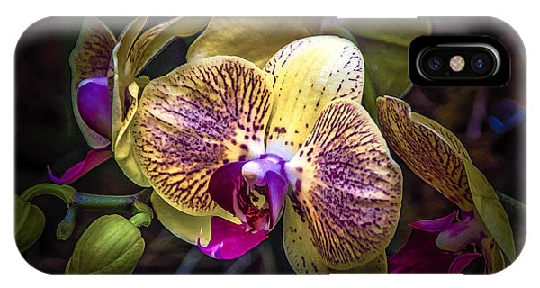Exotic Orchid Bloom IPhone Case