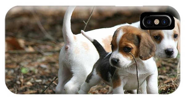 Exploring Beagle Pups IPhone Case