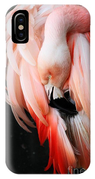 Exquisite Pink Flamingo #1 IPhone Case