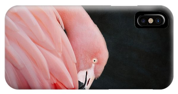 Exquisite Pink Flamingo #5 IPhone Case