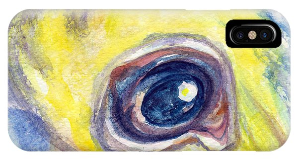 IPhone Case featuring the painting Eye Of Pelican by Ashley Kujan