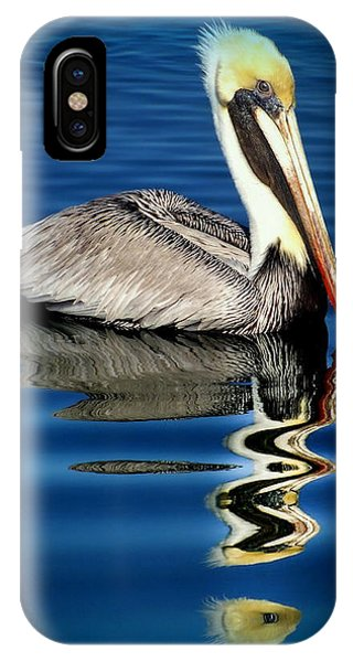 Nc iPhone Case - Eye Of Reflection by Karen Wiles