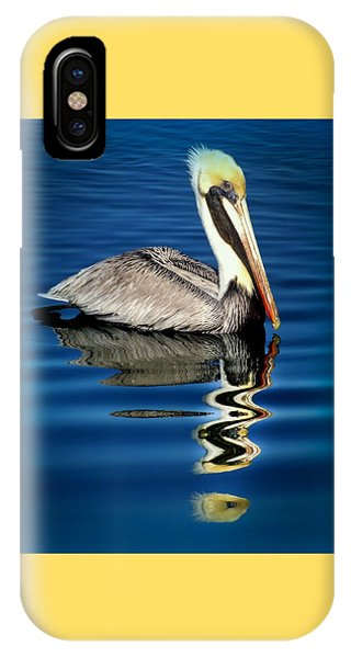 Pelican iPhone Case - Eye Of Reflection by Karen Wiles
