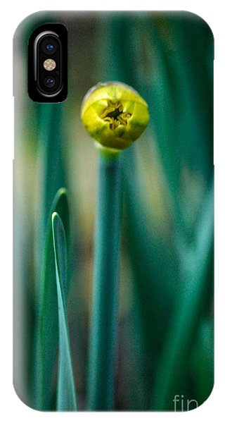 Eye Of The Daffodil IPhone Case