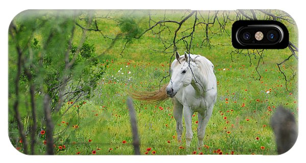 Eye On Beauty IPhone Case