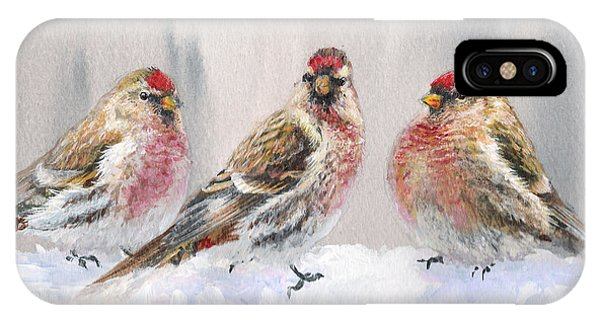 Snowy Birds - Eyeing The Feeder 2 Alaskan Redpolls In Winter Scene IPhone Case