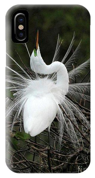 Fabulous Feathers IPhone Case