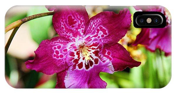 Fabulous Fushia Orchids By Diana Sainz IPhone Case