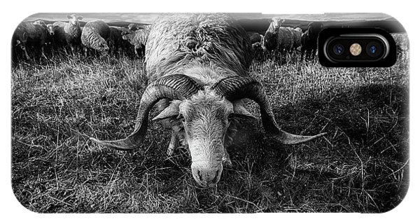 Horn iPhone Case - Face To Face by Peter Majkut