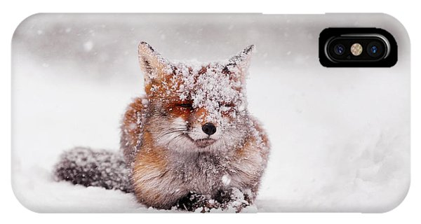 Fairytale Fox II IPhone Case