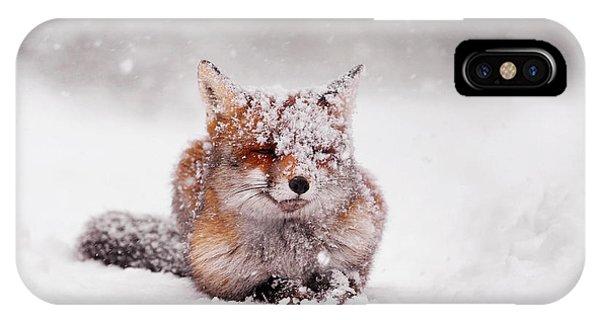 Winter iPhone Case - Fairytale Fox II by Roeselien Raimond