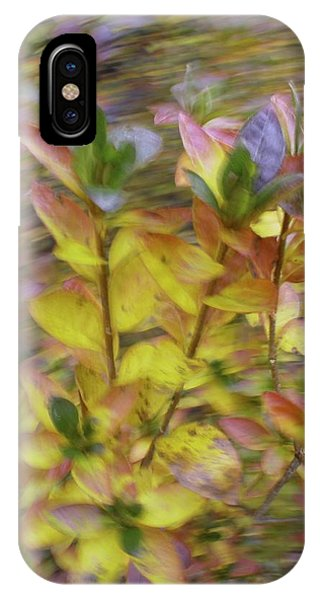 Autumn Azaleas 3 IPhone Case