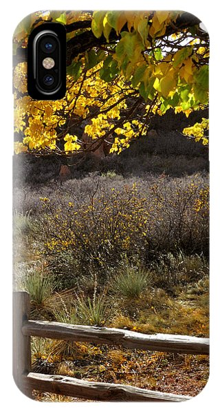 Fall Canopy And Fence 12476 IPhone Case